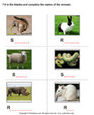 Write the names of the animals 5