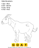 Color the farm animals 17