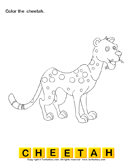 Color the wild animals 8