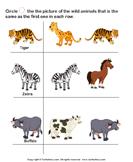 Identify wild animals 2