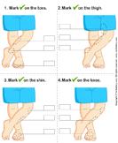 Identify parts of human leg 5