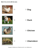 Match Animals to Their Names - animals - Kindergarten