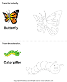 Trace the Stages of the Butterfly Life Cycle - animals - Kindergarten