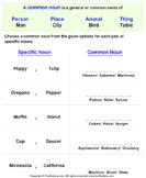 Choose Common Noun for each Pair of Proper Noun