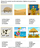 Choose the Noun for each Picture