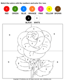 Color the Rose by Numbers