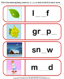 Complete each Word and Identify Long Vowel