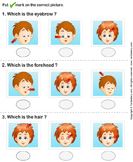 Identify Parts of Human Face - the-human-body - Preschool