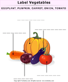 Label the Fruits and Vegetables - plants - Kindergarten