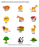 Words with Animal Names - noun - Kindergarten