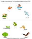 Science Food Chain Worksheets