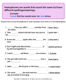 Select the Homophones for each Sentence