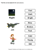 Tick Adjectives for Pictures of Night Jet Boy